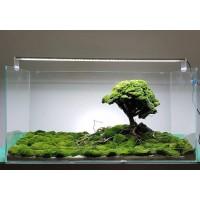 Akvaryum Clear Stone - 400C